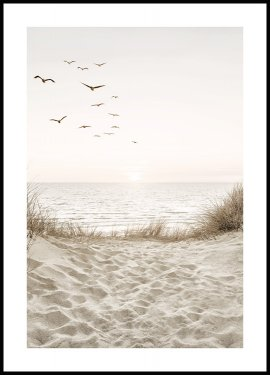 Birds by the Beach Poster